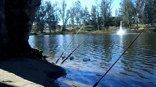 Fishing Little Lake Hemet California part 1