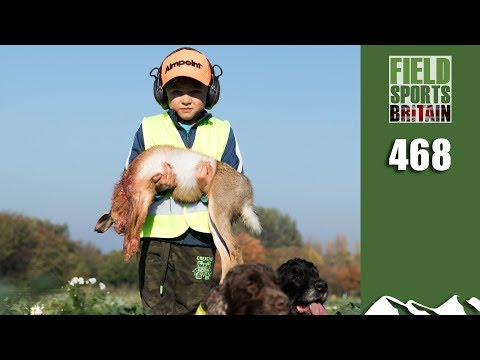 Fieldsports Britain - Where Hares And Pheasants Are Pests
