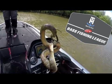 FLW BFL (6/23/18) - OHIO RIVER
