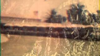 Swans - The Wolf (Fan Music Video