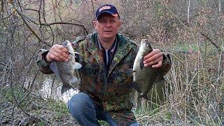 Фидерная ловля на реке. Ранняя весна- лещ карась. Фидерная оснастка для трофейной рыбы.