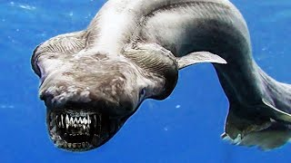 10 Deep Sea Creatures You Don't Want to Meet