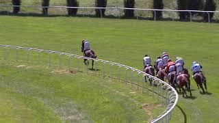 Vidéo de la course PMU PRIX DE DIEPPE