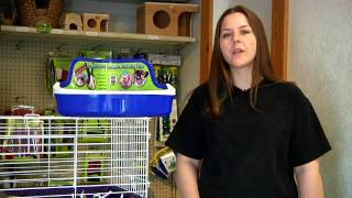 Small Pets : How to Litter Box-Train a Rabbit