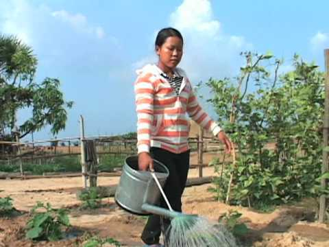 Cambodian Development Projects Create Opportunities, Problems for Rural Poor