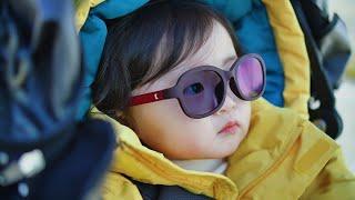 애플도 울고갈 트루톤 선글라스와 無환경호르몬 1세대의 …