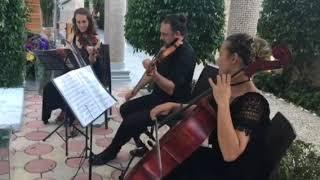 Gambar cover Klasik Müzik Trio - Müzik Evren - Kemer / Antalya