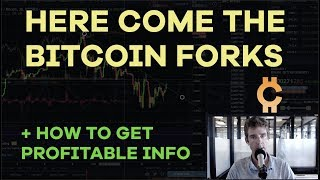 The Forks Are Coming + What It Means - ETH, Bitcoin Gold, B2X, Getting Real Information - CMTV Ep64