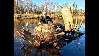 Giant Alaskan Moose -Self Guided **4 Hunts** 2017-  Kent Kaiser