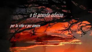 Michele Zarrillo-La Notte Dei Pensieri [ +Testo ]