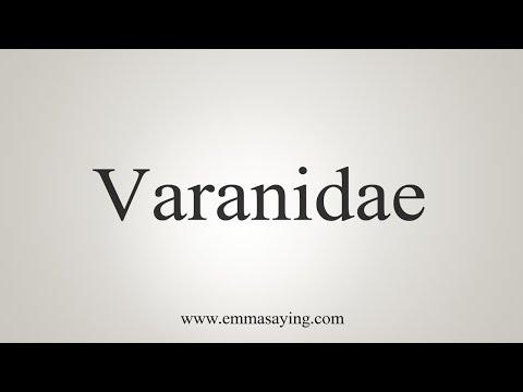 How To Pronounce Varanidae