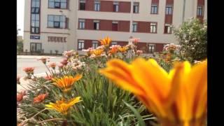 الاقامة الجامعية في سطيف -الهضاب 01