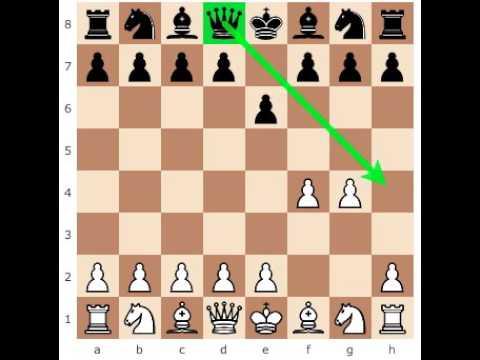 Move Checkmate Diagram on stingray diagram, numbers diagram, black panther diagram, cigarette diagram, cobra diagram, civil war diagram, birds of prey diagram,
