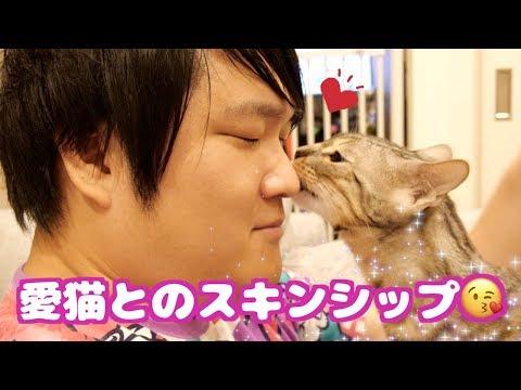 猫ちゃんにキスしてもらう方法がこちら♡