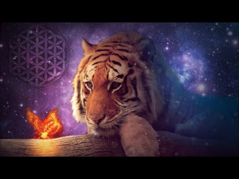 ❤️�� 528Hz Remove Negative Emotions & Unwanted Thoughts 24/7 》Deep Healing Music