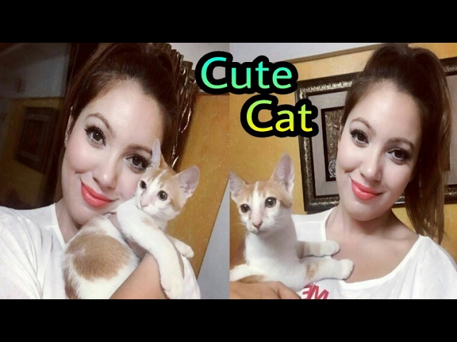 TMKOC Actress Munmum Dutta As Babita Enjoy with Cat & Puppies