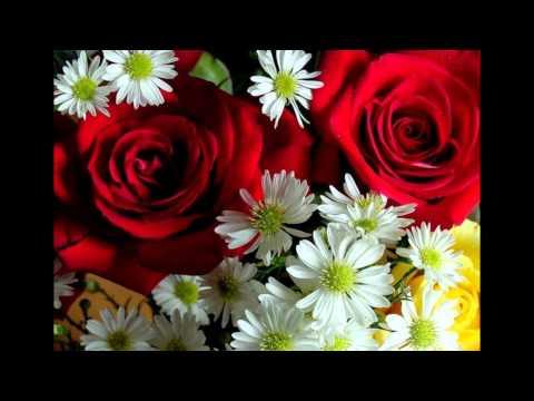 София Ротару-Луна,цветы