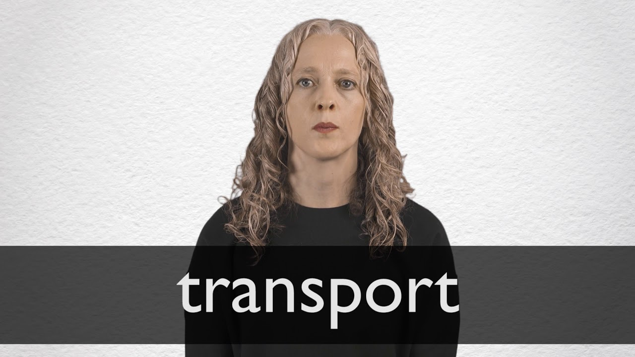 Transport definition and meaning | Collins English Dictionary