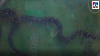 തപാലിൽ വിഷപാമ്പും ഒപ്പം ഭീഷണികത്തും; പോസ്റ്റോഫീസ് ജീവനക്കാരി ഭീതിയിൽ| Trivandrum Varkkala post offic