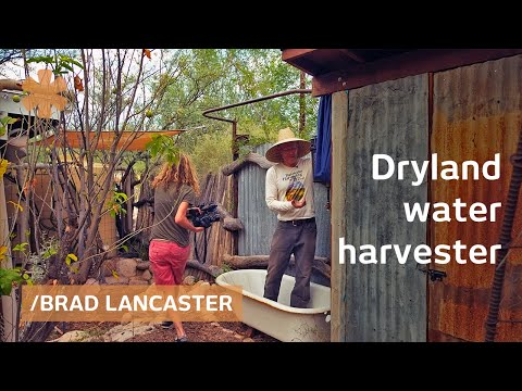 Dryland harvesting home hacks sun, rain, food & surroundings
