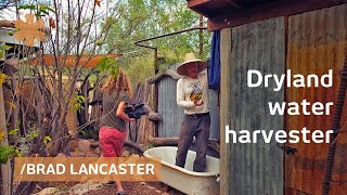 Dryland harvesting home hacks sun, rain, food & surroundings thumbnail