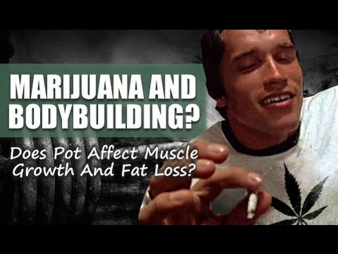 Marijuana And Bodybuilding: Does Weed Affect Muscle Growth?