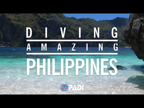 Diving the Amazing Philippines 🦈