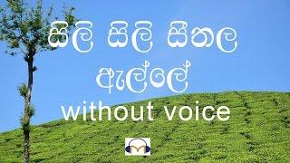 Sili Sili Seethala Alle karaoke (without voice) සිලි සිලි සීතල ඇල්ලේ