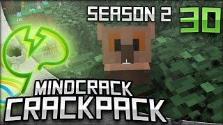 Owl Pets - Mindcrack CrackPack War - S2E30