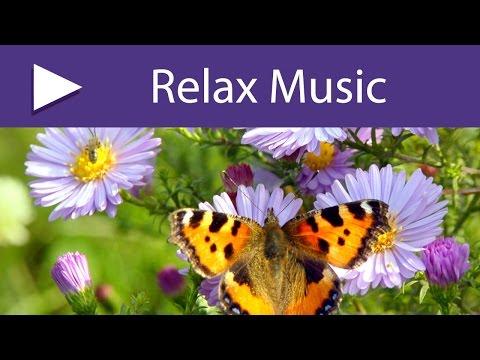 Equinozio di Primavera: Musica Primaverile con Suoni della Natura per il Risveglio Mattutino