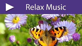 Spring Equinox: Spring Music with Nature Sounds and Soft Peaceful Songs for Awakening