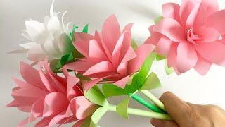 【コピー用紙】クルクマ  【Paper Flower】Siam tulip (Curcuma)