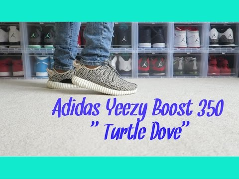 """Adidas Yeezy Boost 350 """"Turtle Dove"""" Review/On Foot!"""