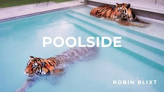 poolside #5 | Chillwave · Daytime Disco · Deep | 2013