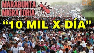 GOBMX: 10 MIL MIGRANTES X DÍA PUEDEN INGRESAR A MEXICO #CARAVANAMIGRANTE