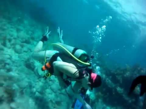 Molasses Reef Scuba Diving with a GoPro - 8/21/2014