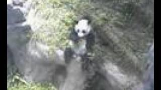 Mei Lan September 12, 2007