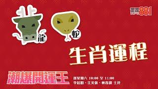 【2020年十二生肖運程】 屬龍三合太歲 屬蛇冠軍就是你!