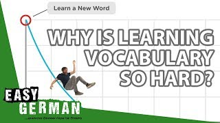 Why is learning vocabulary so hard?