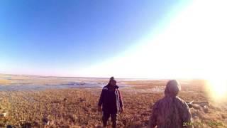 Охота на гуся в Хмао