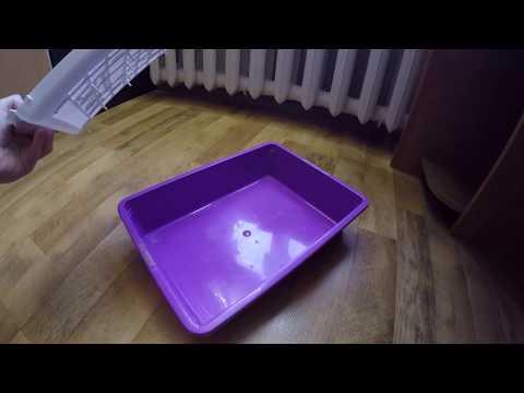Вопрос: Что делать, если котёнок наелся наполнителя для лотка?
