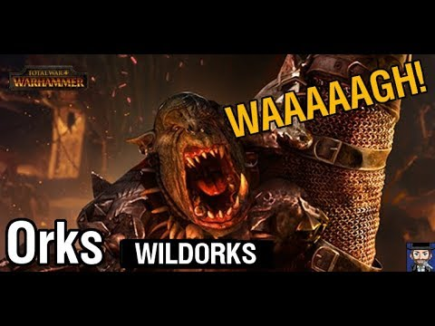Total War Warhammer   WILDORKS - Sehr Schwer #05   Radious Mod   Deutsch