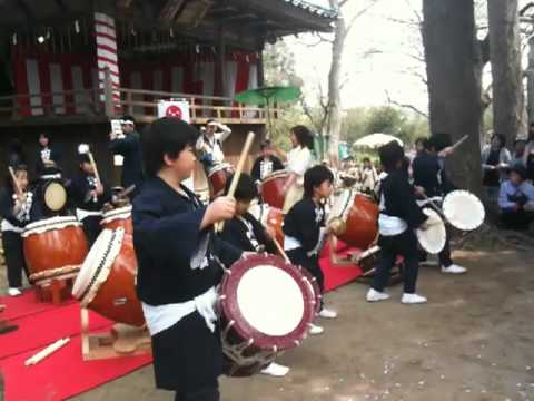 Japanese Festival. Drummers and Performers