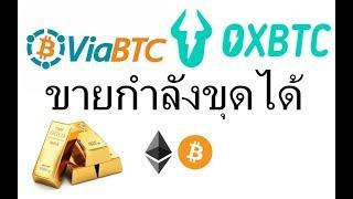 ViaBTC กับ OXBTC เว็ปขุด Bitcoin  ขายกำลังขุด ได้