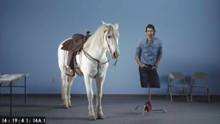snickers super bowl commercial 2017 teaser adam driver horse casting
