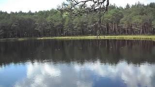 Aukstaitija Nationalpark Litauen  Ginuciai