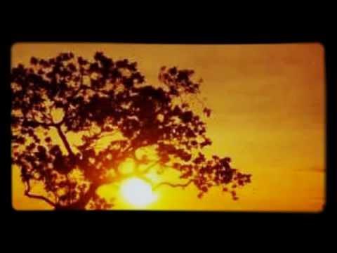 Curahan Hati SUAMI ( Song Cover Kitaro_Caravansary