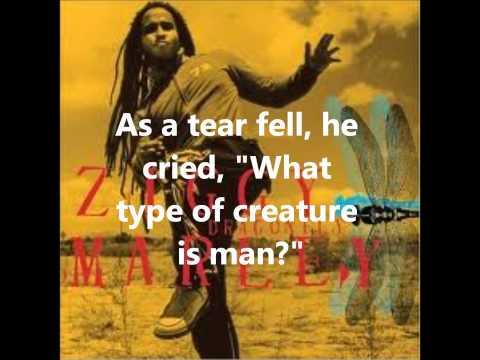 Ziggy Marley Dragonfly Lyrics On Screen