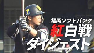 【打つ方のキャノン炸裂】2月20日 福岡ソフトバンク紅白戦ダイジェスト