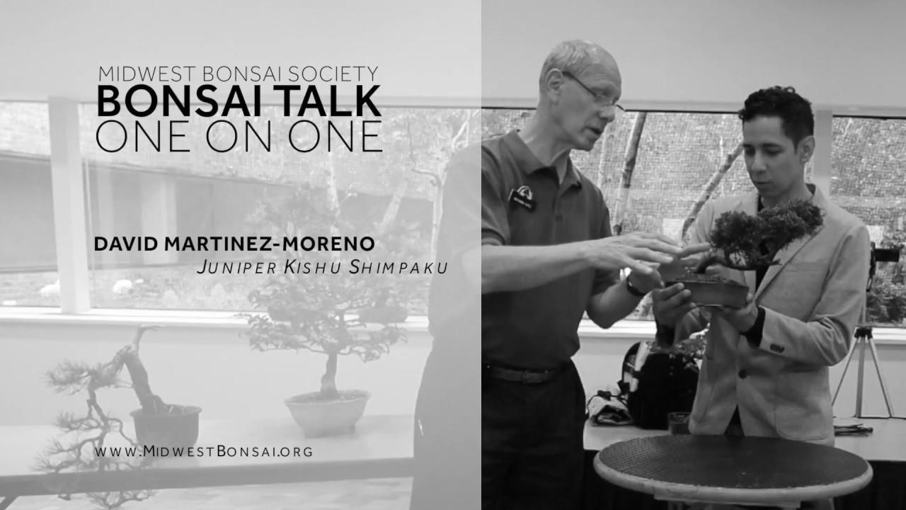 Videos About Bonsai Midwest Bonsai Society